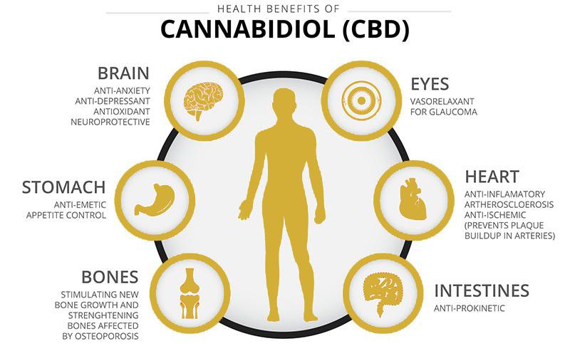 CBD Benefits & Dosing - SERENE CBD